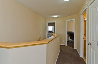 Photo 17: 117 Evansmeade Circle NW in Calgary: Evanston Detached for sale : MLS®# A1042078