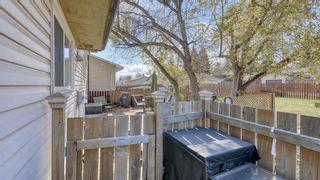 Photo 36: 347 Whiteside Road NE in Calgary: Whitehorn Detached for sale : MLS®# A1153718