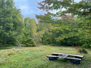 Photo 12: 1005 Heathbell Road in Scotch Hill: 108-Rural Pictou County Vacant Land for sale (Northern Region)  : MLS®# 202124669