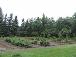Photo 42: 26127 TWP Road 514: Rural Parkland County House for sale : MLS®# E4240381