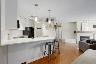 Photo 1: 102 25 Richard Place SW in Calgary: Lincoln Park Apartment for sale : MLS®# A1106897