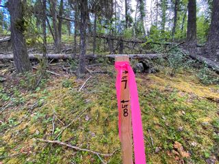 """Photo 9: LOT 7 S SOMERSET Drive: Cluculz Lake Land for sale in """"SOMERSET ESTATES"""" (PG Rural West (Zone 77))  : MLS®# R2596563"""