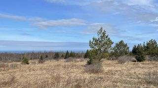 Photo 2: 2115 Arlington Road in Mount Rose: 400-Annapolis County Vacant Land for sale (Annapolis Valley)  : MLS®# 202106691