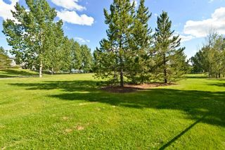 Photo 10: 103 Cranwell Close SE in Calgary: Cranston Detached for sale : MLS®# A1091052