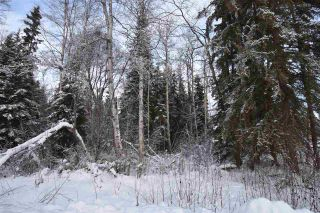 """Photo 12: 3 3000 DAHLIE Road in Smithers: Smithers - Rural Land for sale in """"Mountain Gateway Estates"""" (Smithers And Area (Zone 54))  : MLS®# R2280165"""