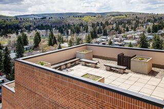 Photo 28: 1013 8604 48 Avenue NW in Calgary: Bowness Apartment for sale : MLS®# A1107613