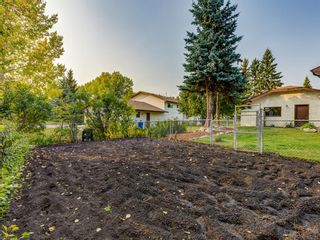Photo 45: 1233 Smith Avenue: Crossfield Detached for sale : MLS®# A1034892
