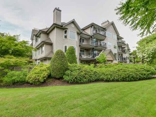 Photo 1: 110 3770 MANOR Street in Burnaby: Central BN Condo for sale (Burnaby North)  : MLS®# V1126532