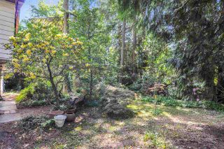 Photo 23: 4193 206A Street in Langley: Brookswood Langley House for sale : MLS®# R2457676
