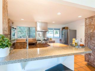 Photo 23: 86 STEVENS Drive in West Vancouver: British Properties House for sale : MLS®# R2568373