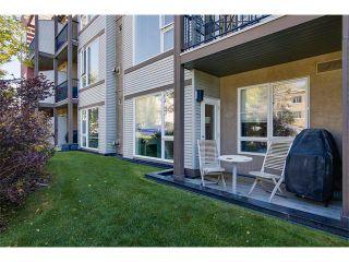 Photo 20: 115 3600 15A Street SW in Calgary: Altadore_River Park Condo for sale : MLS®# C4034020