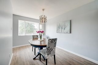 Photo 12: 10128 50 Street in Edmonton: Zone 19 House for sale : MLS®# E4256675