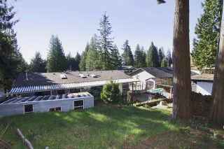 Photo 9: 438 E BRAEMAR Road in North Vancouver: Upper Lonsdale House for sale : MLS®# R2100624