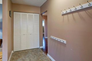 Photo 18: 527 MURPHY Place NE in Calgary: Mayland Heights Detached for sale : MLS®# C4297429