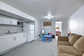 Photo 31: 1027 Penrith Crescent SE in Calgary: Penbrooke Meadows Detached for sale : MLS®# A1104837