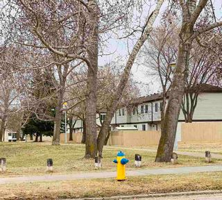 Photo 21: 14615 55 Street in Edmonton: Zone 02 Townhouse for sale : MLS®# E4257008