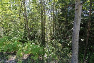 Photo 11: Lot 90 Birch Close: Land Only for sale : MLS®# 10071170