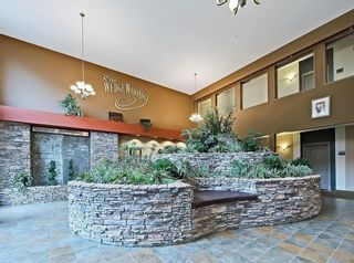 Photo 24: 527 20 DISCOVERY RIDGE Close SW in Calgary: Discovery Ridge Apartment for sale : MLS®# C4299334