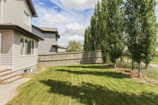 Photo 45: 11445 14A Avenue in Edmonton: Zone 55 House for sale : MLS®# E4236004