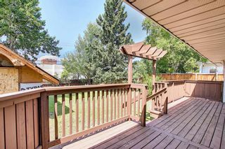 Photo 26: 10443 Wapiti Drive SE in Calgary: Willow Park Detached for sale : MLS®# A1128951