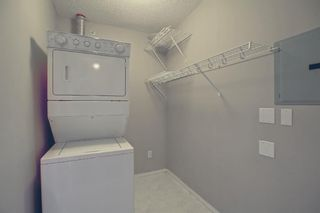 Photo 19: 412 260 Shawville Way SE in Calgary: Shawnessy Apartment for sale : MLS®# A1146971