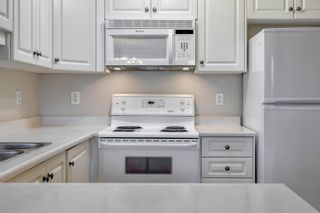 Photo 7: 102 10649 SASKATCHEWAN Drive in Edmonton: Zone 15 Condo for sale : MLS®# E4265960