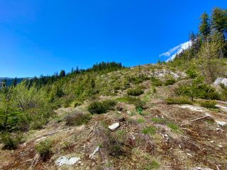 Photo 36: DL 1752 GIVEOUT CREEK FOREST SERVICE ROAD in Nelson: Vacant Land for sale : MLS®# 2458886