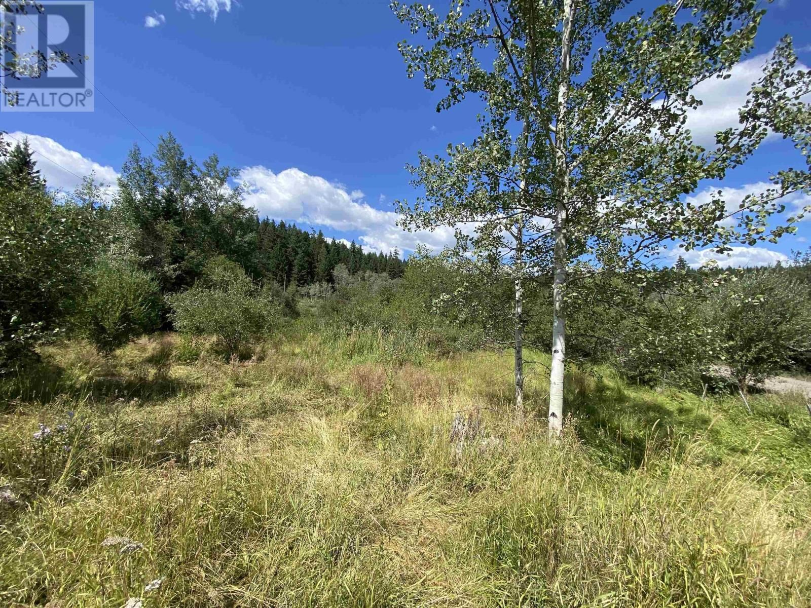 Main Photo: DL2350 TIMOTHY LAKE ROAD in Lac La Hache: Vacant Land for sale : MLS®# R2610977
