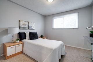 Photo 16: 43 Doverdale Mews SE in Calgary: Dover Row/Townhouse for sale : MLS®# A1052608