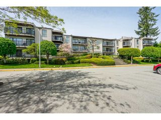 """Photo 2: 213 9952 149 Street in Surrey: Guildford Condo for sale in """"Tall Timbers"""" (North Surrey)  : MLS®# R2366920"""