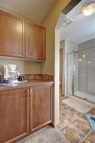 Photo 25: 86 EVERGLEN Crescent SW in Calgary: Evergreen Detached for sale : MLS®# C4291405