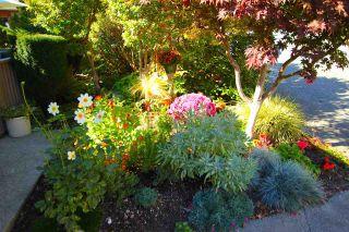 "Photo 17: 412 1215 LANSDOWNE Drive in Coquitlam: Upper Eagle Ridge Townhouse for sale in ""SUNRIDGE ESTATES"" : MLS®# R2126165"