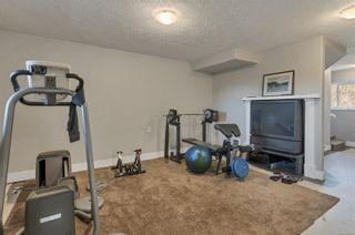 Photo 38: 2274 Anderton Rd in : CV Comox Peninsula House for sale (Comox Valley)  : MLS®# 867203