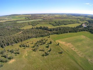 Photo 8: ON Highway 27: Rural Mountain View County Land for sale : MLS®# A1012341