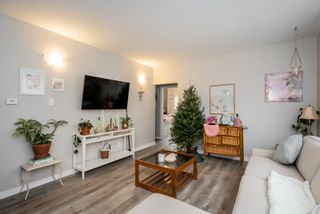 Photo 13: 113 Eugenie Street in Winnipeg: Multi-family for sale (2B)  : MLS®# 202028339