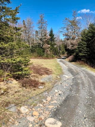 Photo 5: 33 Bruce Drive in Ship Harbour: 35-Halifax County East Vacant Land for sale (Halifax-Dartmouth)  : MLS®# 202110751
