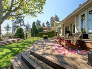 Photo 40: 6749 Welch Rd in : CS Martindale House for sale (Central Saanich)  : MLS®# 875502
