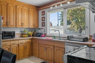 Photo 16: 279 Lynnwood Way NW in Edmonton: Zone 22 House for sale : MLS®# E4265521