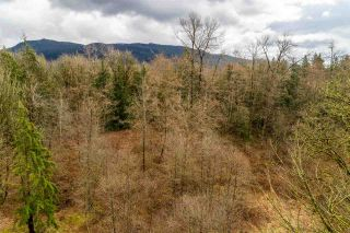 Photo 8: 30684 DEWDNEY TRUNK Road in Mission: Stave Falls Land for sale : MLS®# R2536315