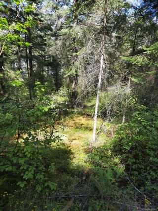 Photo 19: Lot 4 Ruxton Island in : Isl Ruxton Island Land for sale (Islands)  : MLS®# 877827