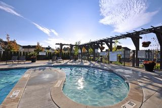 "Photo 40: 105 30989 WESTRIDGE Place in Abbotsford: Abbotsford West Townhouse for sale in ""Brighton"" : MLS®# R2472362"