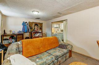 Photo 23: 20 Castleridge Close NE in Calgary: Castleridge Detached for sale : MLS®# A1113165
