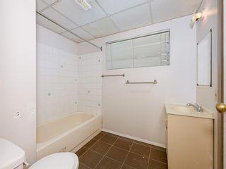 Photo 15: 40 Castlepark Road NE in Calgary: Castleridge Detached for sale : MLS®# A1146252