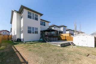 Photo 42: 245 Springmere Way: Chestermere Detached for sale : MLS®# A1095778