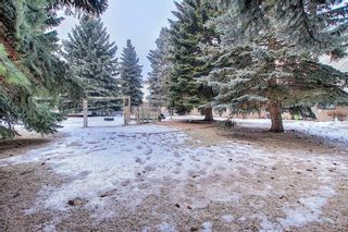 Photo 30: 64 3705 Fonda Way SE in Calgary: Forest Heights Apartment for sale : MLS®# A1065357