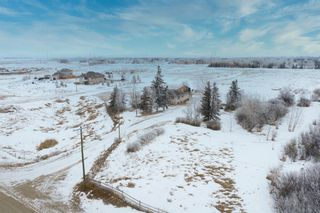 Photo 44: 243068 Rainbow Road: Chestermere Detached for sale : MLS®# A1065660