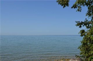 Photo 7: 2879 Georgina Drive in Ramara: Rural Ramara Property for sale : MLS®# S3947425