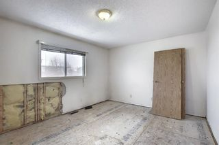 Photo 16: 14 Everglade Drive SE: Airdrie Semi Detached for sale : MLS®# A1067216