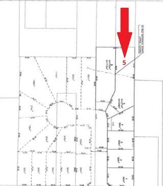 Photo 1: LT.5 10627 127 Street in Surrey: Whalley Land for sale (North Surrey)  : MLS®# R2538703