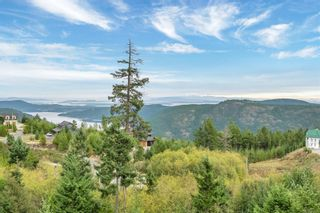 Photo 42: 4335 Goldstream Heights Dr in Shawnigan Lake: ML Shawnigan House for sale (Malahat & Area)  : MLS®# 887661